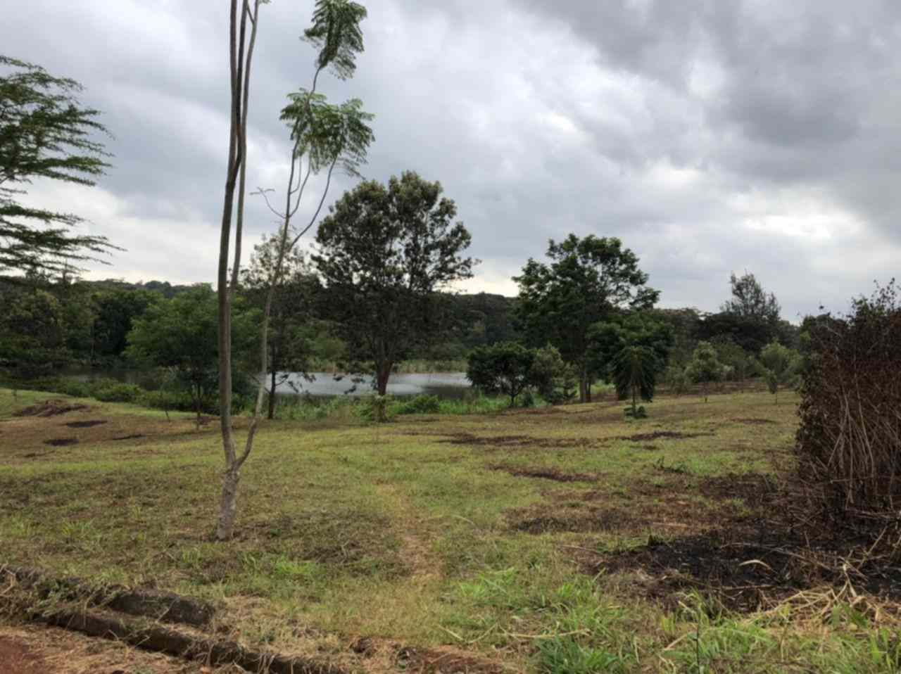 Land along Kiambu road Njathaini for sale