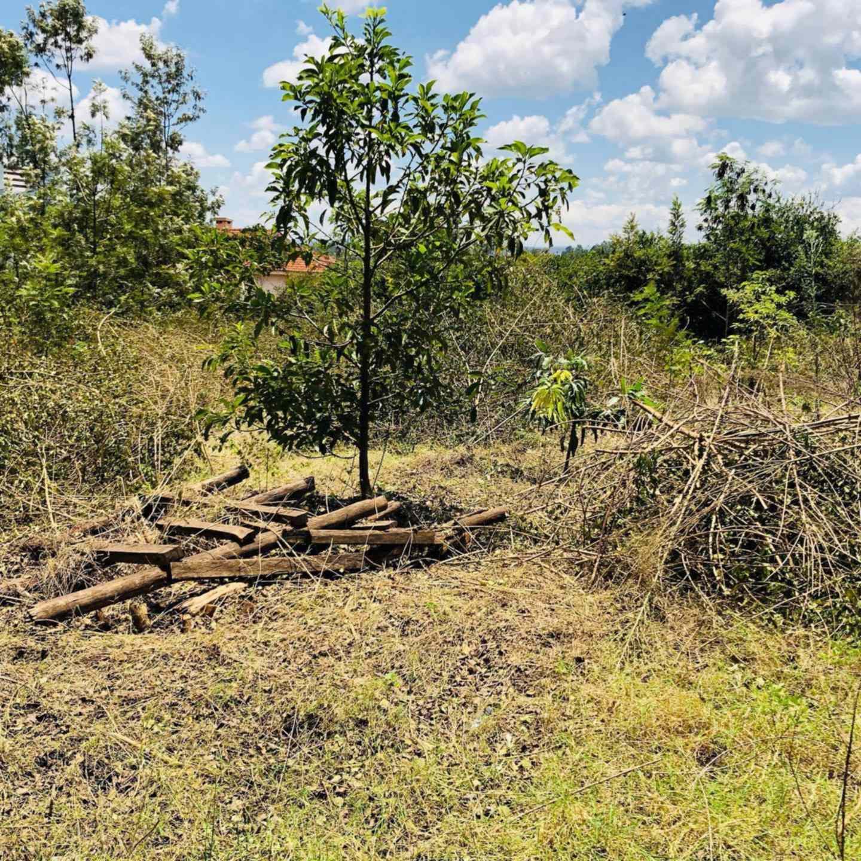 Land for sale in Membley estate forrest court
