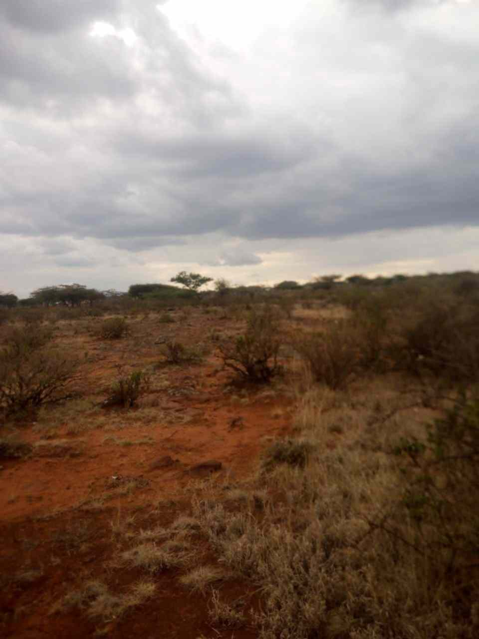 Land in Ngong Hills for sale