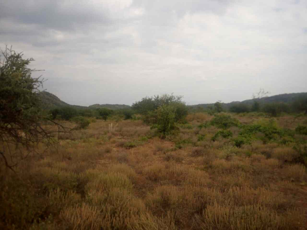 Ngong Suswa sgricultural land for sale